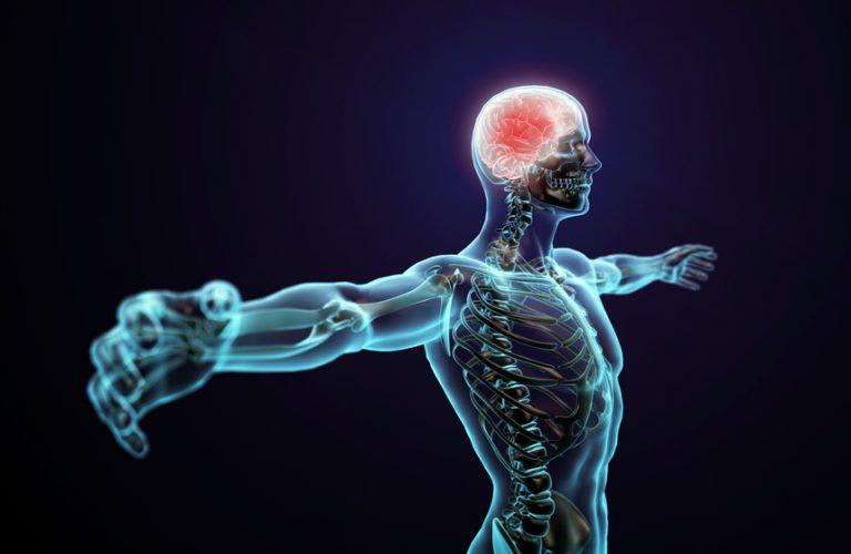 姿勢のゆがみが学力・運動能力につながる仕組み